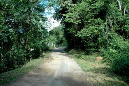 Parque Natural Municipal do Ingá